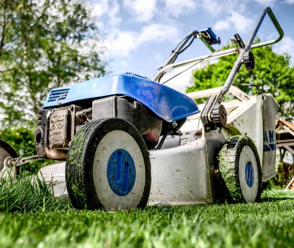 Albuquerque Lawn Services