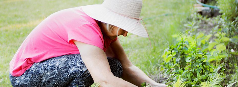 Landscaping Services Albuquerque