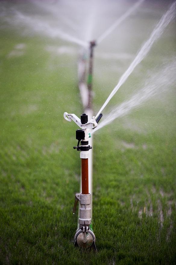 Sprinkler Installation Albuquerque